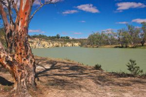 Facts About The Murray River